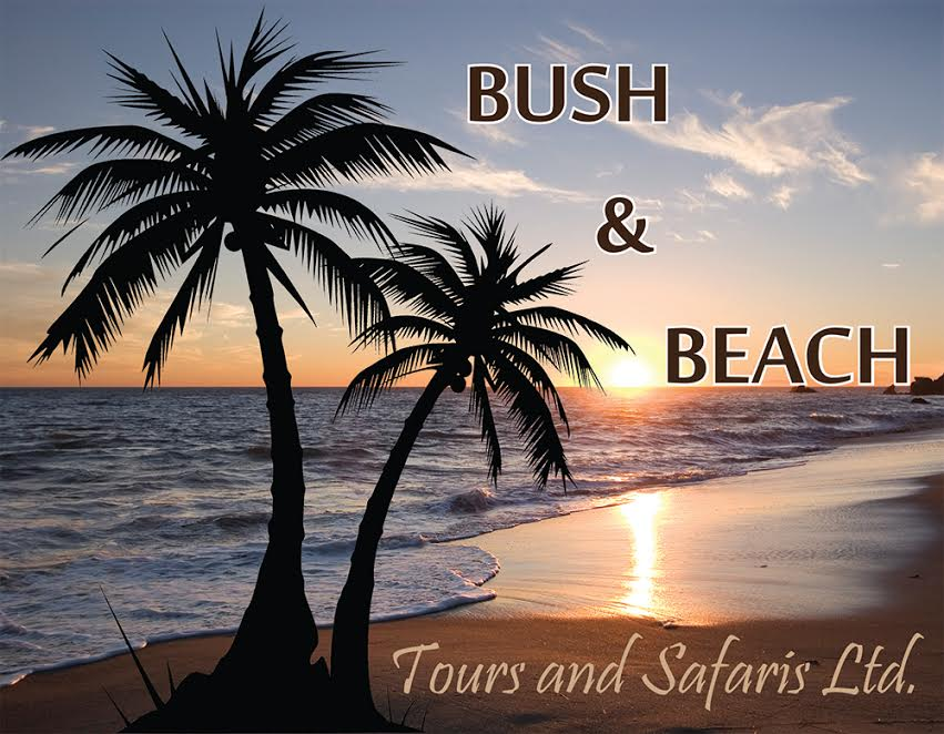 Bush and Beach Travel and Safaris